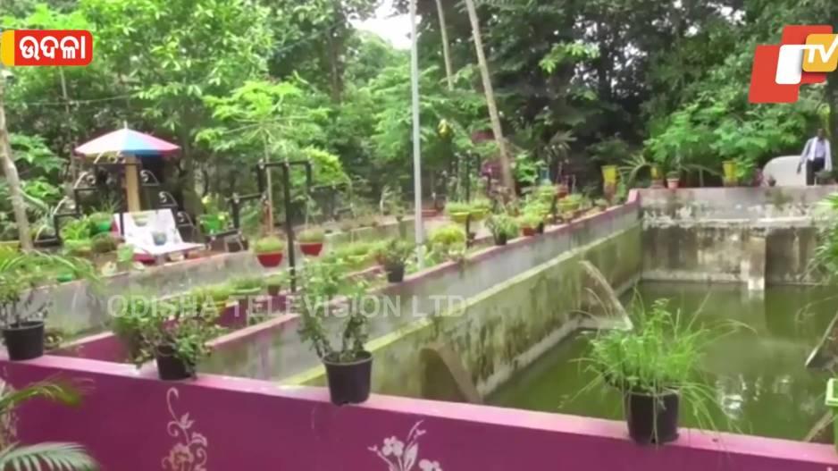 Dularam's Beautiful Park