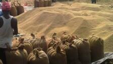 Paddy traded below MSP at market Yards in Odisha's Kendrapada: APMC report