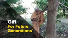 This Old Man In Odisha Has Planted More Than 500 Trees | OTV News