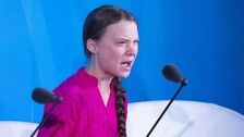 Greta Thunberg Toolkit For Protests Sparks Row In India