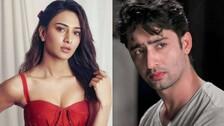 Kuch Rang Pyaar Ke Aise Bhi 3: Shaheer Sheikh, Erica Fernandes Falling Apart This Time?