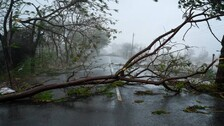 Cyclone Tauktae Leaves Behind Trail Of Destruction In Gujarat; 4 Dead