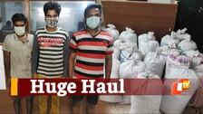 Odisha: 456 Kg Ganja Seized While Being Smuggled To UP From Koraput