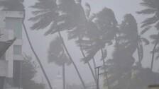 Cyclone Yaas: IMD Issues Red Warning To 8 Odisha Districts