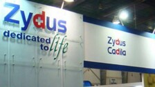 Zydus Cadila Applies For Emergency Use Authorisation For COVID-19 Vaccine With DCGI