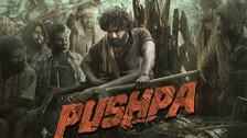 Allu Arjun's Pushpa: Bollywood Actress To Replace Rashmika Mandanna in Sequel?