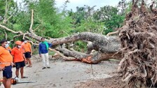Cyclone Yaas: Roadways, Water Supply Restoration In Full Swing In Odisha