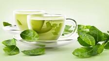 Green Tea Might Help Tackle Covid: Indian-Origin Researcher