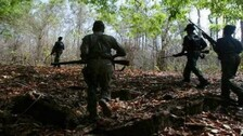 Cadre Maoist Killed In Police Encounter In Odisha, Arms & Ammunitions Seized