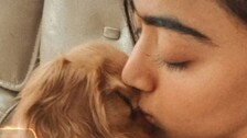 Rashmika Mandanna Is Deeply in Love And These Clicks Are a Proof