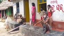 COVID Orphans Stare At Uncertain Future In Odisha