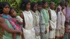 Dongria Kondh Women Bearing The Double Burden