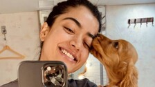 Rashmika Mandanna Gets Taste Of Bollywood Haters Even Before Her Debut