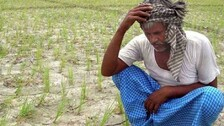 Sharecroppers Of Odisha - Children Of A Lesser God