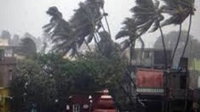Low Pressure Area Near Odisha Coast On July 21: Will There Be Another Cyclone?