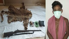 Odisha Police Seize 15 Leopard Skins In Past One Year