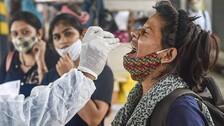 Intranasal Vaccine Blocks Covid, Stops Transmission In Animal Trials