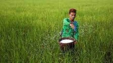Odisha Flags Concerns Over Short Supply Of Fertilizers, Seeks Early Solution
