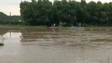Flood Threat In Subarnarekha, Low-Lying Villages In Balasore Put On Alert