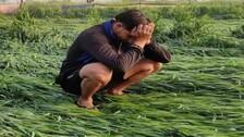 93% of Landless Farmers In Odisha Opted PM Fasal Bima Yojana