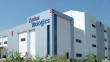Zydus Cadila's ZyCoV-D Gets Emergency Authorisation For Use In India