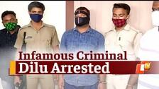Om & Dipu Murder Case: Prime Accused Dilu Nabbed From Odisha's Rayagada
