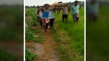 No End To Plight Of Patients: Sans Motorable Road, Woman Carried On Cot In Odisha