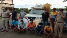 Web Portal Scribe Caught In Drug Racket, Ganja Worth Over Crore Seized In Malkangiri