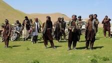 Afghan Crisis: Fresh Fighting Reported From Panjshir