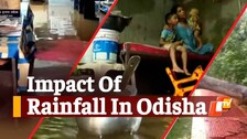 Several Parts Of Odisha Receive Heavy Rainfall Owing To Deep Depression Over BoB