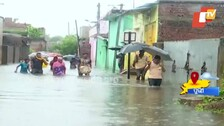 Rain-Battered Odisha To See More Downpours, IMD Sounds Red Alert For 7 Districts