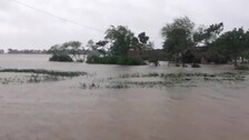 Rain Fury In Odisha: SRC Orders To Assess Damages In A Week For Compensation