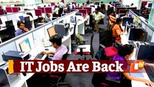 Proof Jobs In IT Sector Are Back, TCS, Infosys, Wipro Big Hirers