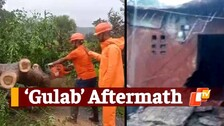 Cyclone Gulab: Impact In Odisha