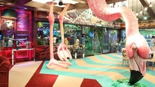 Giant Flamingo Stands Out In Jungle-Themed 'Bigg Boss 15' House