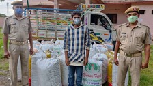 Ganja Worth Over Rs 2.5 Crore Seized By Police In Separate Places In Odisha