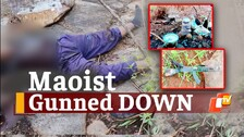 Odisha: Senior Cadre Maoist Killed In Gunfight With Security Forces In Bargarh Reserve Forests
