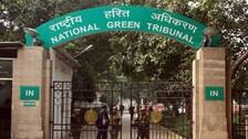Maintain Status Quo Of Ekamra Kanan Land: NGT Directs Odisha Govt