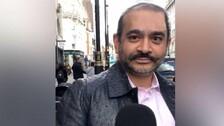 PNB Fraud Case: UK Court Again Rejects Fugitive Nirav Modi's Bail