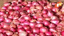Onion Prices In Odisha Hit The Roof Due To Rain In Nashik