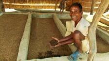 Alcohol-Addict UP Village's Amazing Transformation Into Hub For Organic Farming