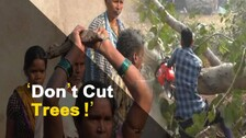 Locals In Odisha Clash With Police Protesting Cutting Of Trees | OTV News