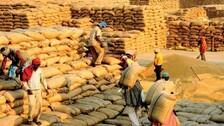 No 'Token' blow, Paddy prices drop Rs 65/q below MSP in Odisha's Sundargarh!