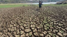 Drought Fear Looms Large In 21 Odisha Districts: Dry Spell To Continue Till Aug 16