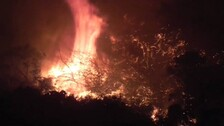 Odisha: Wildfire Continues To Rage In Similipal Forest Park